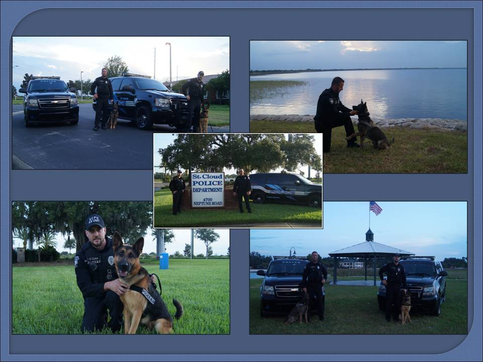 Collage of Photos of the K9 Unit